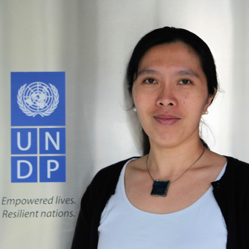 Dr. Catherine Phuong (Assistant Resident Representative, Governance and Participation at UNDP Vietnam)